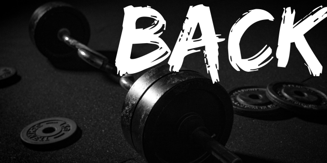 Training: Back